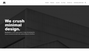 Best non-blog WordPress Themes
